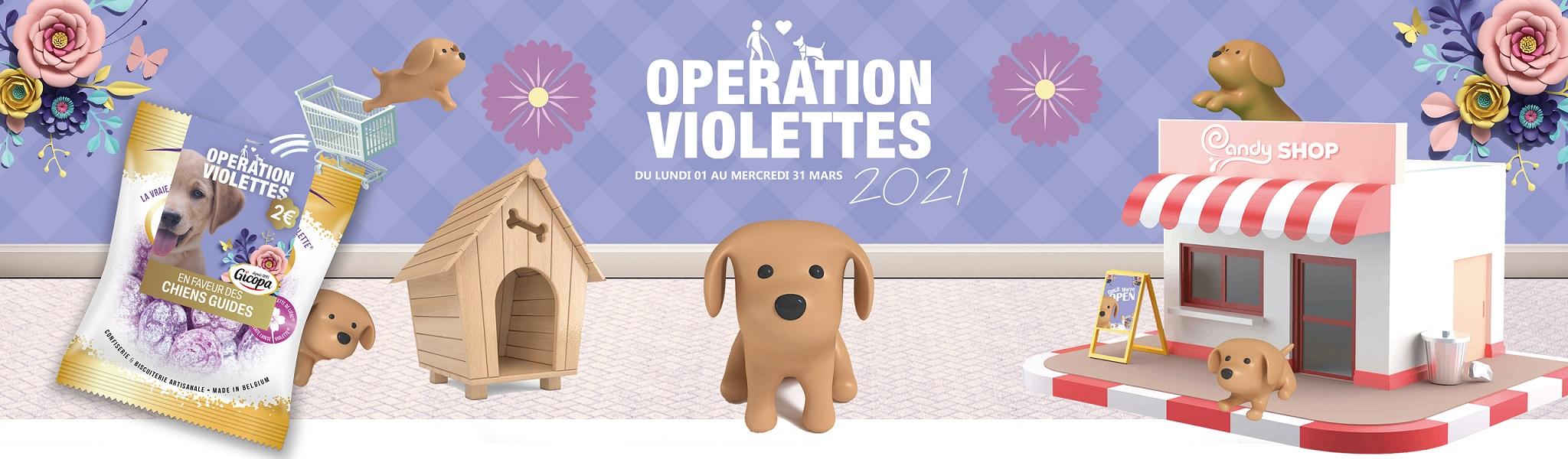 Banner Violettes 2021